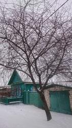 Продам дом 81, 7 кв.м,  Беларусь,  г. Добруш,  соток 10, 47